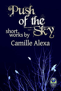 push of the sky e-book