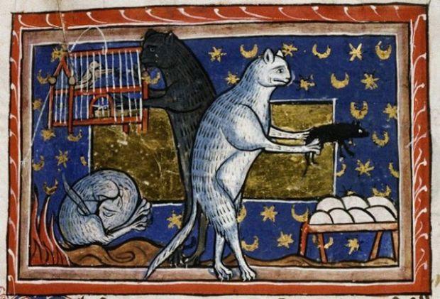 medieval cats.jpg